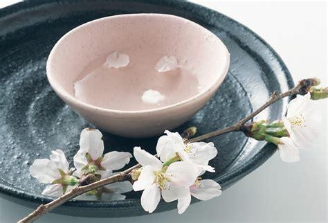 遅咲きの「兼六園菊桜」で風雅な趣ある一人花見