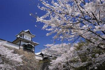 歴史と風情を感じる金沢の街並は観光にもおすすめ