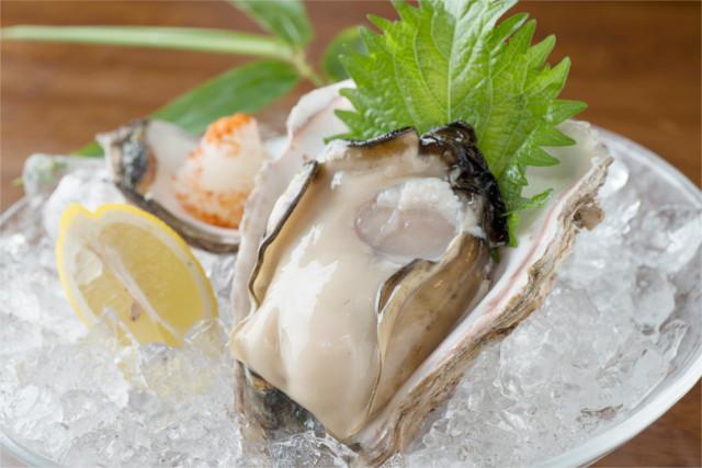 栄養満点の美味しい牡蠣を育ててくれるのは「能登の里山里海」